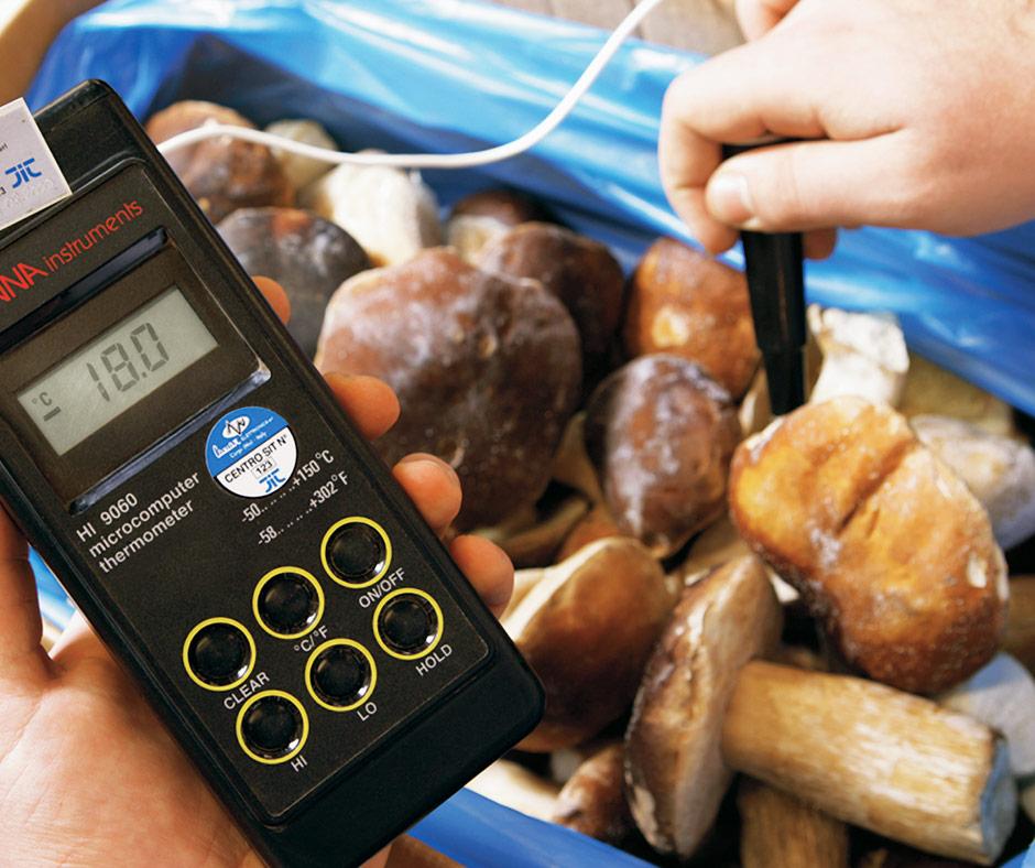 Catena del freddo, gli strumenti per controllare la temperatura dei funghi porcini surgelati.