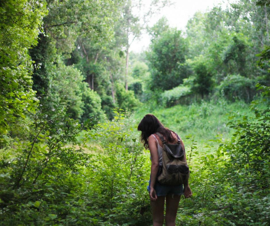 Wilderness, luoghi incontaminati dove avventurarsi