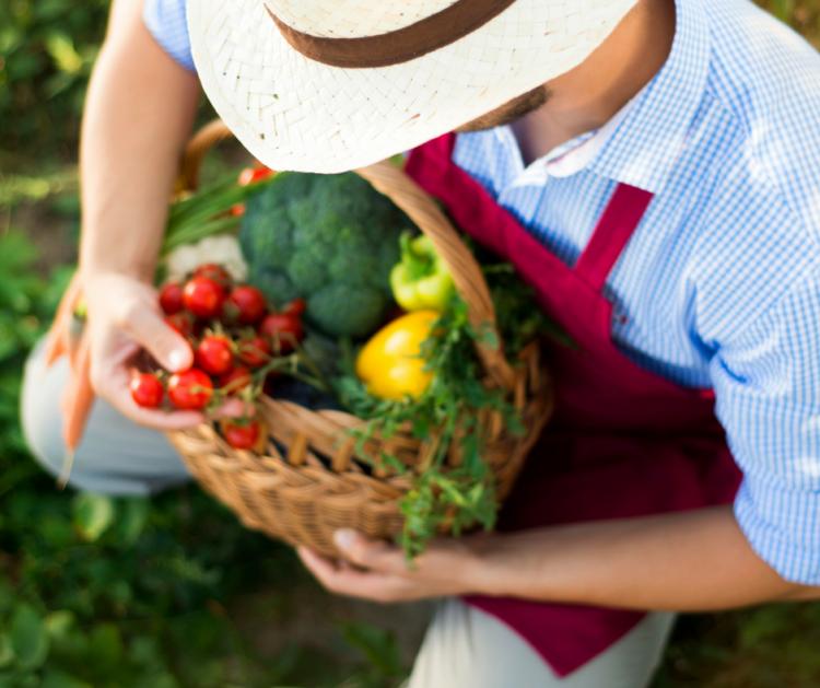 Dieta sostenibile